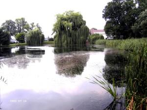Unterer Hofteich
